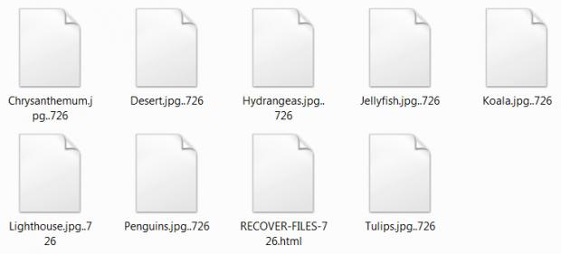 암호화 된 파일의 파일 확장자는 모두 .726입니다
