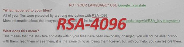 RSA-4096 바이러스 랜섬웨어: 치료 과 복구